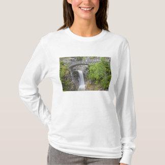 WA Mount Rainier nationalpark, Christine nedgångar Tee Shirt