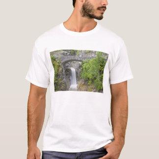 WA Mount Rainier nationalpark, Christine nedgångar Tee Shirts