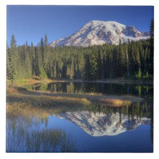 WA Mount Rainier nationalpark, Mount Rainier Kakelplatta