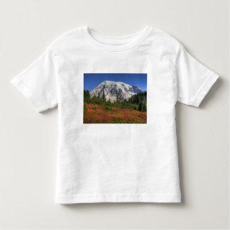 WA Mount Rainier nationalpark, paradisdal T-shirt