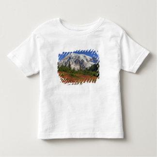 WA Mount Rainier nationalpark, paradisdal T Shirts