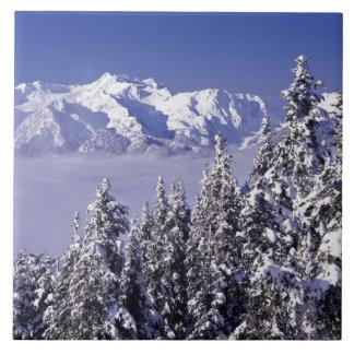 WA OS:en NP, olympisk bergskedja, beskådar Kakelplatta