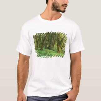 WA OS NP, Quinault regnskog, moss T-shirts
