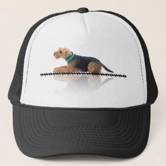 Walesiskt Terrierlock för brunt och för svart Keps