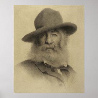 Walt Whitman: Den bra grå färgpoeten Poster