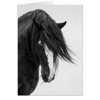 Washakies kort för hälsning för häst för