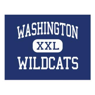 Washington - vildkatter - junior - Naperville Vykort