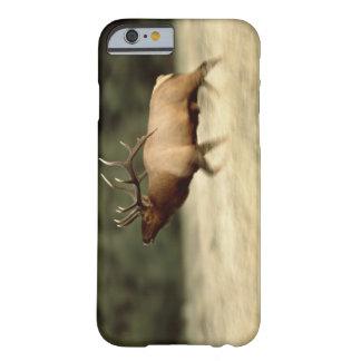 Waterton sjöar nationalpark, Alberta, Kanada, a Barely There iPhone 6 Fodral