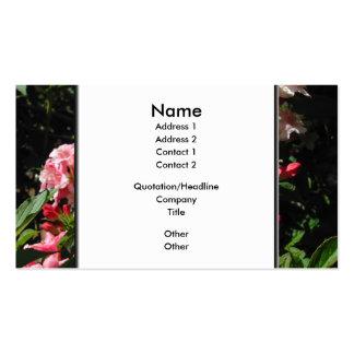 Weigela. Nätt rosa Flowers. Set Av Standard Visitkort