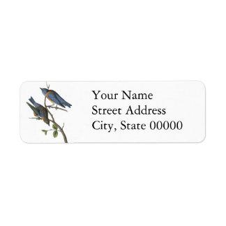 Western blåsångare, John Audubon Returadress Etikett
