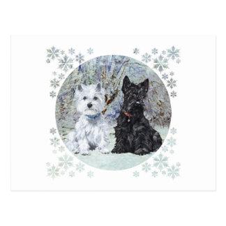 Westie och scottien i snöig landskap vykort