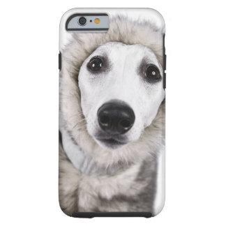 Whippet hund som ha på sig pälslaget, skjuten tough iPhone 6 case
