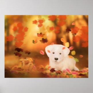 White Dog paper poster (mat) 50.8x40.64cm