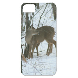 whitetailhjort iPhone 5 Case-Mate cases