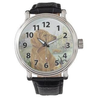 Wirehaired armbandsur för Vizsla valpdrömmare