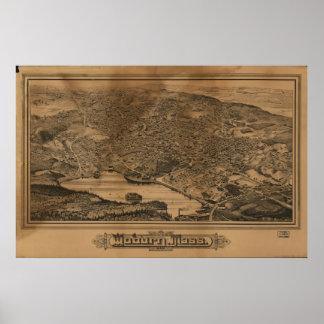 Woburn Massachusetts 1883 antika panorama- karta Poster