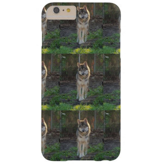 Wolfdog i solljus barely there iPhone 6 plus fodral