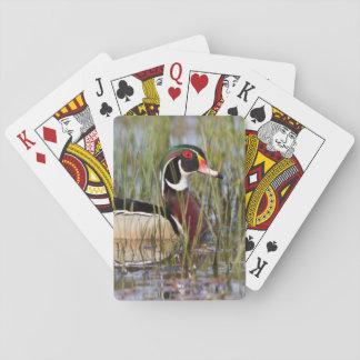 Wood anka i våtmark casinokort