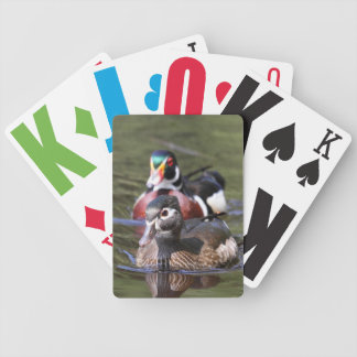 Wood anka som leker kort spelkort
