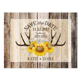 Wood lantlig spara för solroshorn på kronhjort vykort