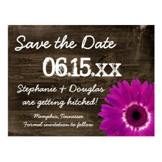 Wood spara för lantlig purpurfärgad daisy vykort