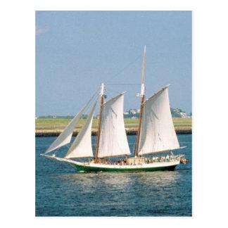 Yacht i den Boston hamnen Vykort