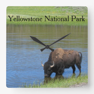 Yellowstone amerikanBison i damm Fyrkantig Klocka