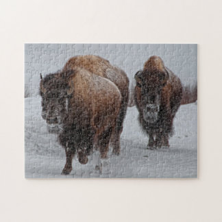 Yellowstone Bison Pussel
