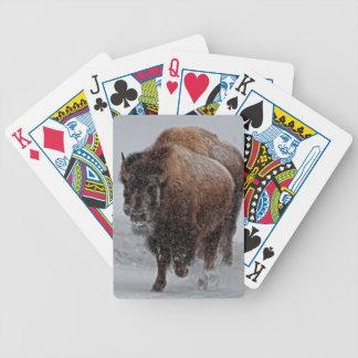 Yellowstone Bison Spelkort