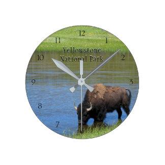 Yellowstone nationalparkBison i damm Rund Klocka