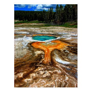 Yellowstone termisk bassäng vykort