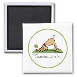 Yoga - nedåt - vända mot hunden