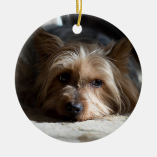 yorkhire/silkeslena Terrierprydnadar Julgransprydnad Keramik