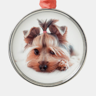 Yorkies Yorkshire för Yorkie hundkärlek Terrier Julgransprydnad Metall