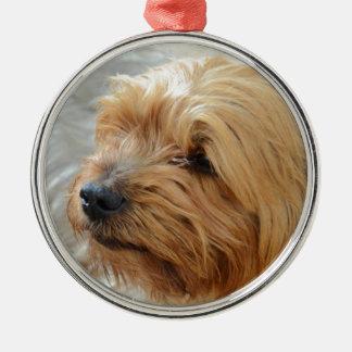 Yorkkshire Terrier Jake Julgransprydnad Metall
