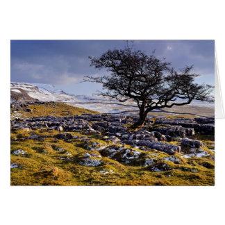 Yorkshire dalarna för Limestoneland - Hälsningskort
