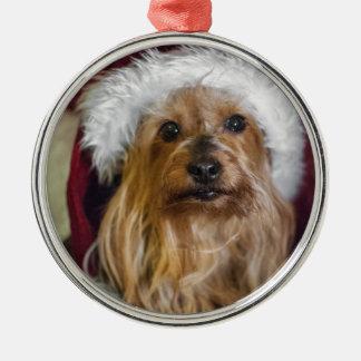 Yorkshire) (för yorkie/silkeslen Terrierprydnad Julgransprydnad Metall
