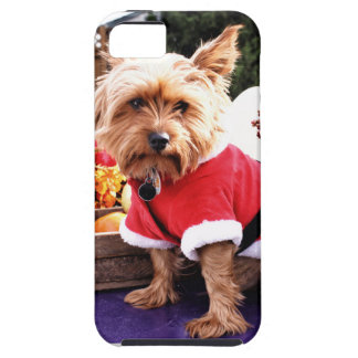 Yorkshire Terrier iPhone 5 Fodral