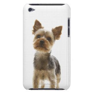 Yorkshire Terrier iPod Case-Mate Fodraler