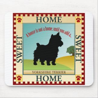 Yorkshire Terrier Musmatta