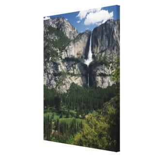 Yosemite Falls och dal 2 Canvastryck