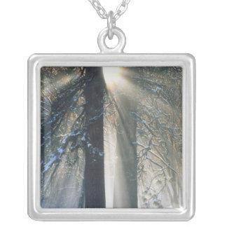Yosemite nationalpark - strömma för solstrålar silverpläterat halsband