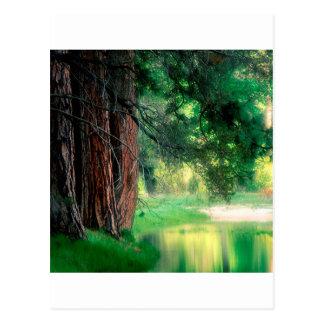 Yosemite parkerar dimmiga reflexioner vykort