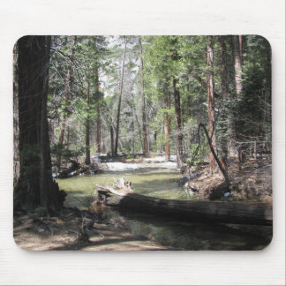 Yosemite skogen musmatta