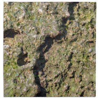 Yta av de gammala stenblocken med mossnärbild tygservett