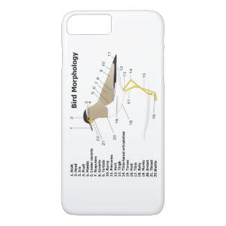 Yttre morfologi av en fågelVanellus Malabaricus