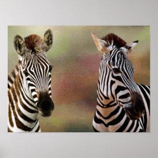 Zazzling zebra tryck