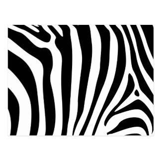 Zebra ränder i svartvitt mönster vykort