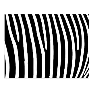 Zebra tryck vykort