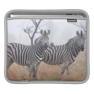 Zebrodern i otta dammar av, den Kruger medborgare iPad Sleeve